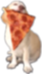 Surf Dog's Pizza Pup