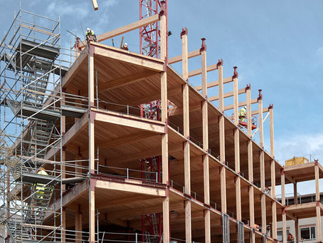 Achieving the Promise of Mass Timber with FSC Wood