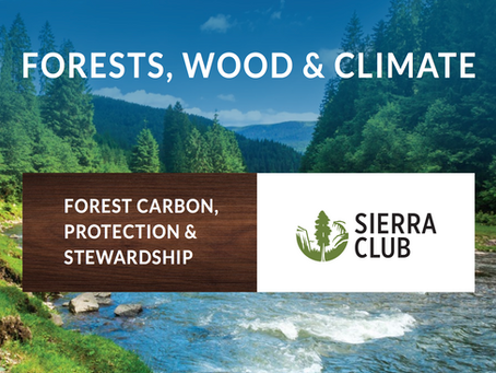 Sierra Club issues new report about forest carbon and CLT