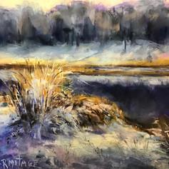 Dunegrass in Winter