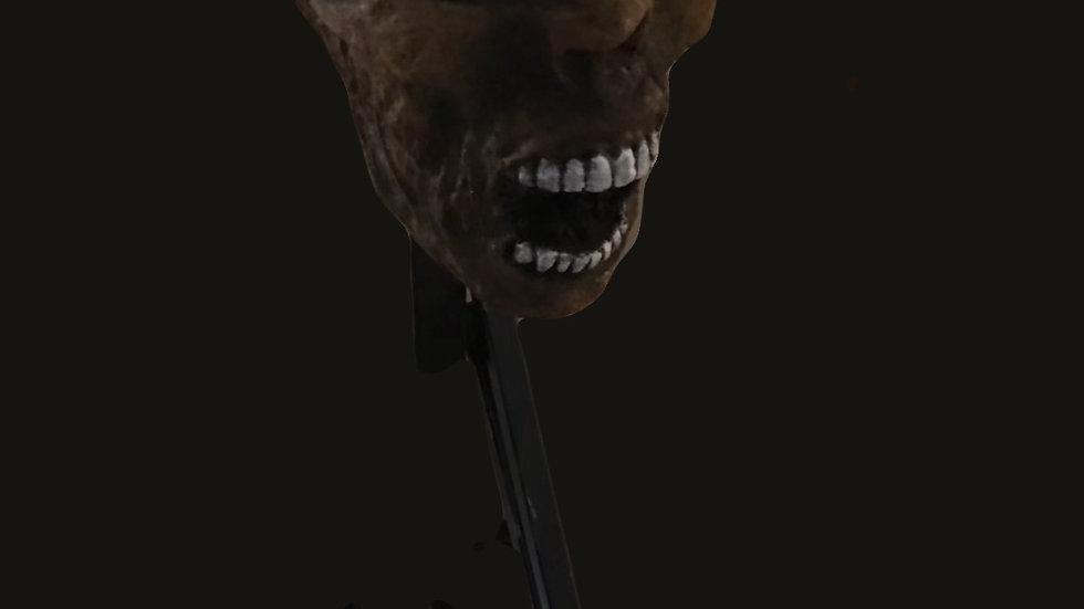 Animatronic medium head popper   (3 head styles )