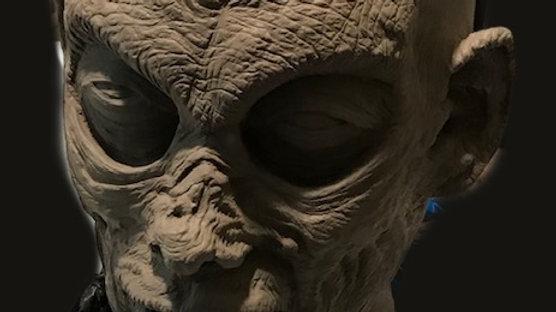 """Character Head Sculpt """" Zombie 03"""""""
