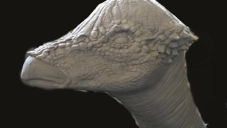 "Creature sculpture head "" pachysaurous:"""
