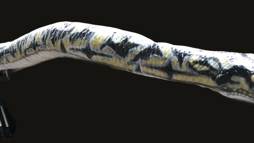 """Static 60"""" snake 3"""" diameter     Exotic"""
