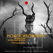 MONOCHROMERIFIC 1st edition