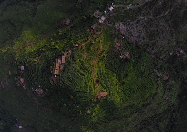 Amit Kanwar - The Planted Hill, India