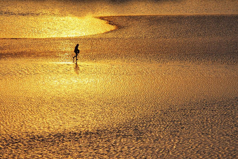 Dibakar Roy - Golden planet Alien, India