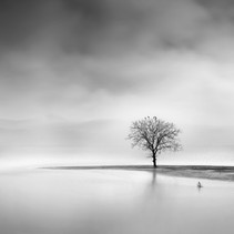 George Digalakis - Landscape in the Mist