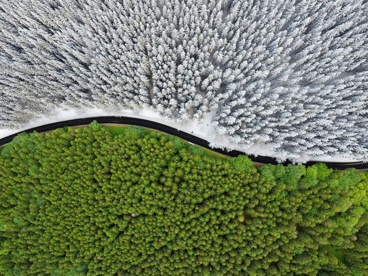 Tomas Neuwirth - Road beetwen Seasons, Czech Republic