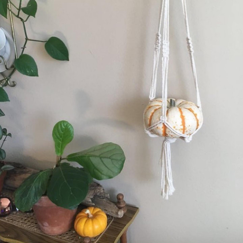 Pixies Pumpkin/plant Hanger Workshop