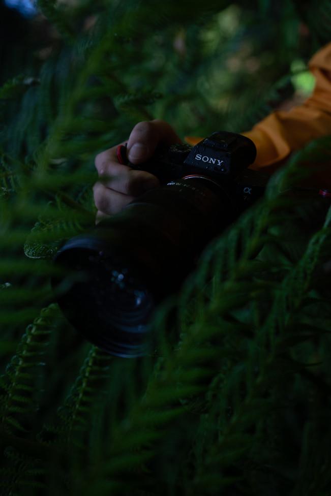 FILM LOOK BEFORE-1.jpg