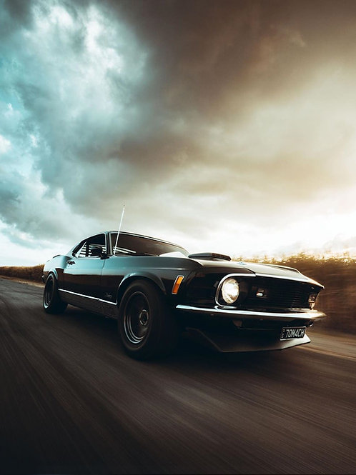 Mustang Roller By Northborders