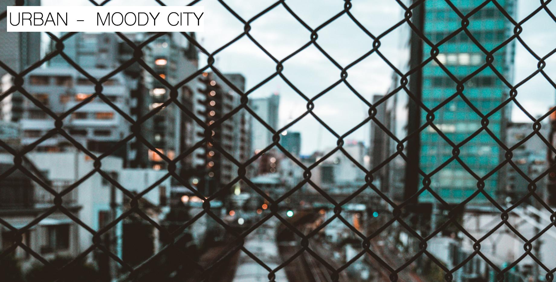 MOODY CITY.jpg