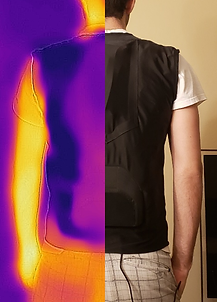 Left-Right FLIR Comparison - Back.png