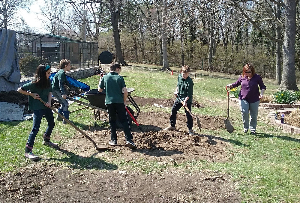 Students dig up garden beds.