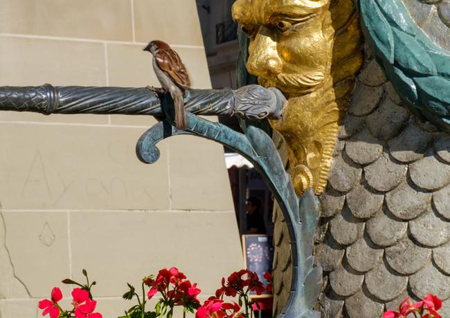 Mosesbrunnen ist ein willkommener Durstlöscher für Gross und Klein