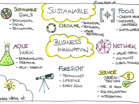 Sustainable Business Innovation
