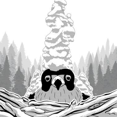 Bird and a Word - Snow