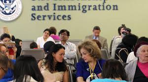 Termination of a contract could leave many legal immigrants undocumented