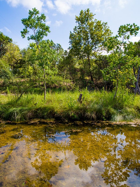 Sinya Creek view.jpg