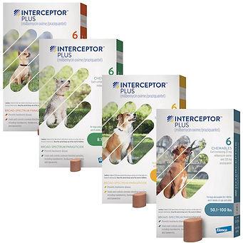 Interceptor Plus.jpg
