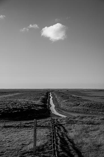 Noorderleegh/North of Friesland/The