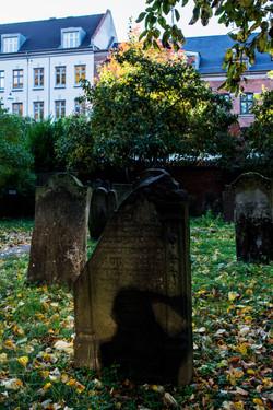 The Jewish Northern Cemetery
