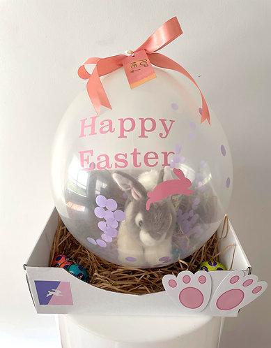 Easter Bunny POP