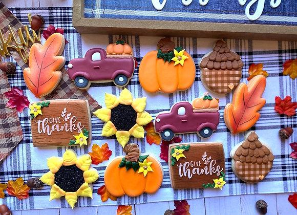 The Pumpkin Patch Assortment