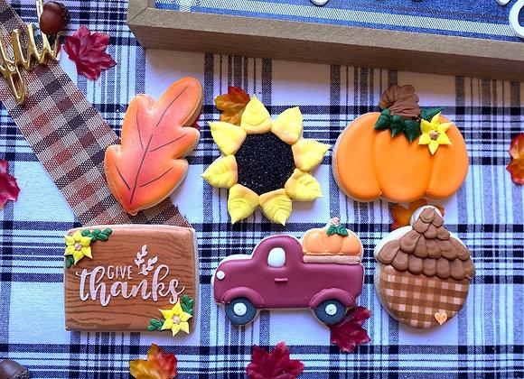 Pumpkin Patch Assortment - HALF DOZEN