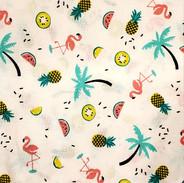 Miudezas_-_Flamingos_Festa_do_Verão__Fun