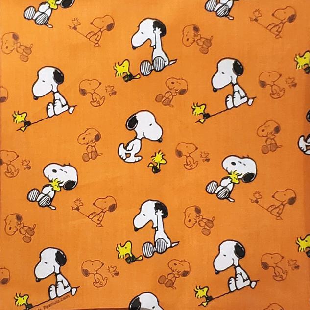Animais - Snoopy _ Fundo Laranja.png