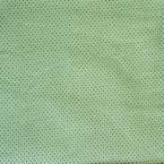 Poa - Verde claro_Bolinhas pretas P.jpg