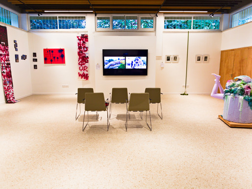 VISUAL VOICES exhibition: The artists discuss