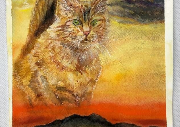 Sundown Cattown - Birdi Sinclair - Clair Arts