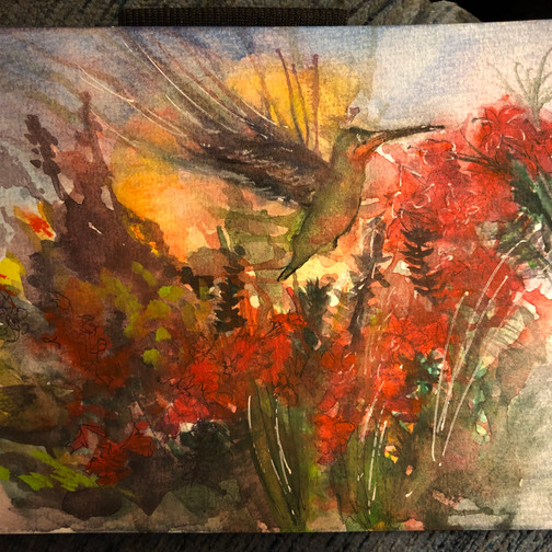 Crimson Hummingbird - Birdi Sinclair