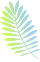 Colorful%20Branch_edited.png