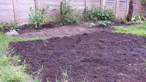 Sarah Rees Garden Blog Pic 52 lawn preparation.jpg