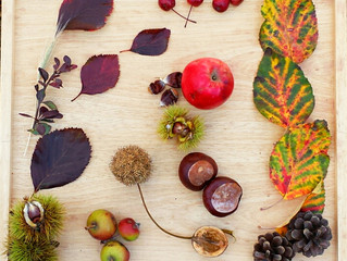 A closer look at the Autumnal Collage