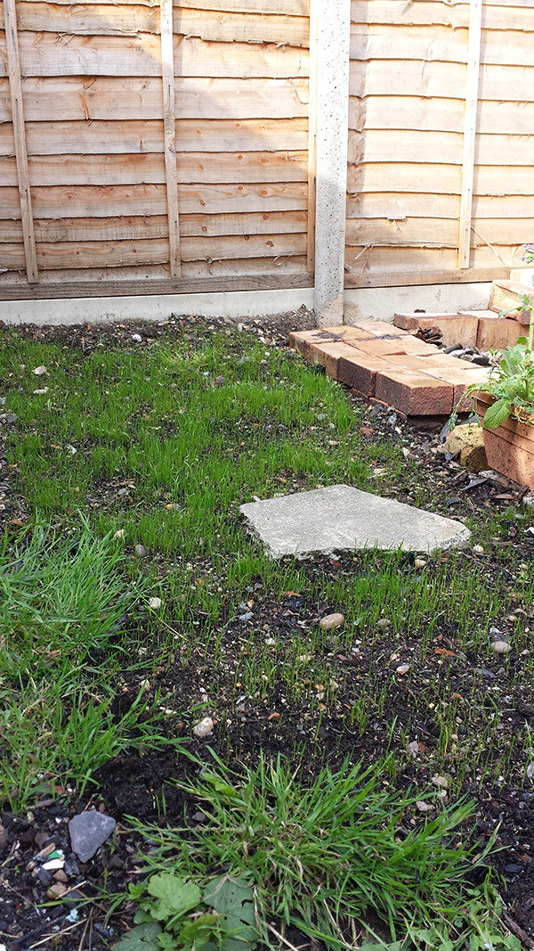 Sarah Rees Garden Blog Pic 272 new grass around stepping stone.jpg