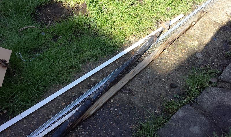 Sarah Rees Garden Blog Pic 7 spear.jpg