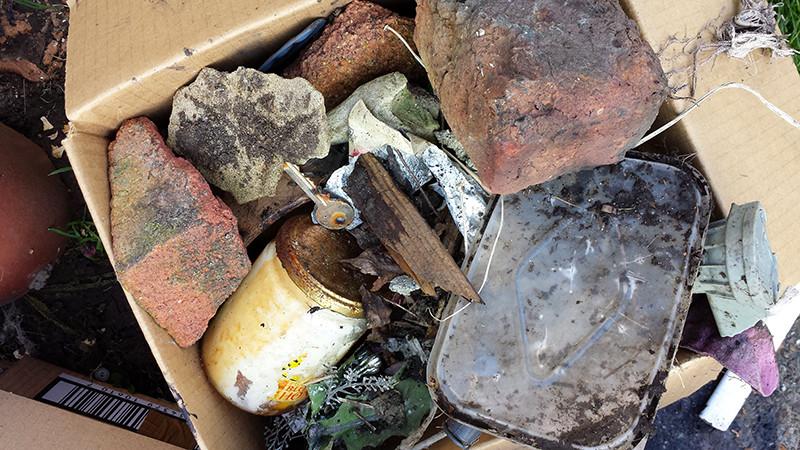 Sarah Rees Garden Blog Pic 13 more rubbish.jpg