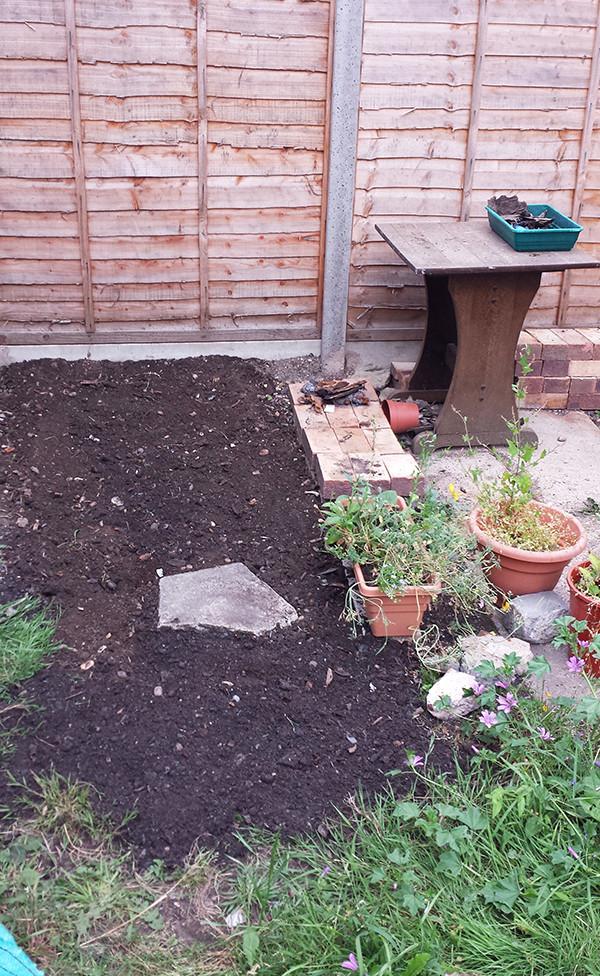 Sarah Rees Garden Blog Pic 257 grass sown.jpg