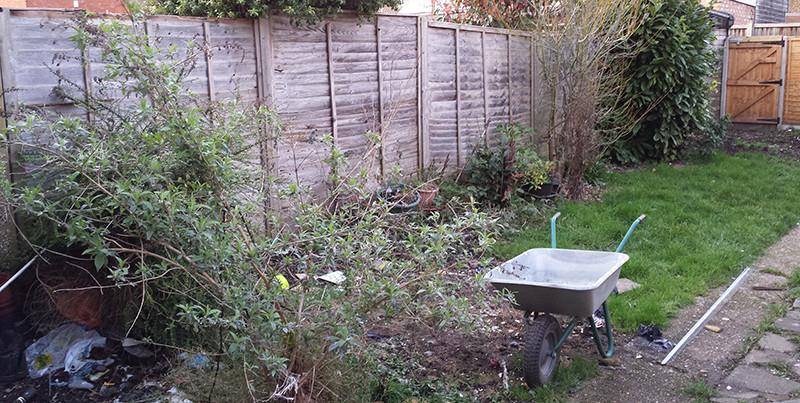 Sarah Rees Garden Blog Pic 3 lawn.jpg