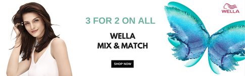 WELLA 342 BANNER NEW.png