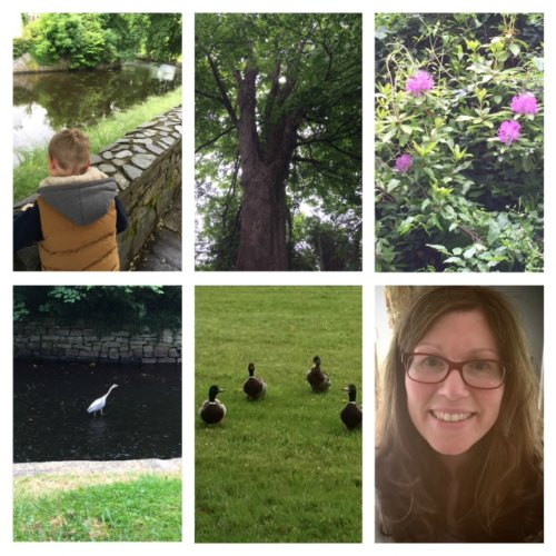 my week at a glance 13
