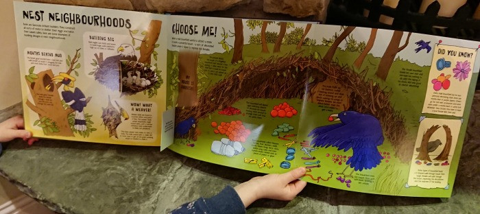 Lonely Planet Kids Books animals build expanded