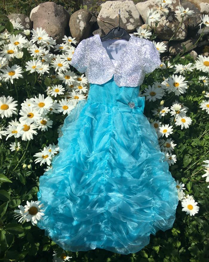 pretend to bee princess dress