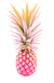 Pineapple Illustration TRANS.png