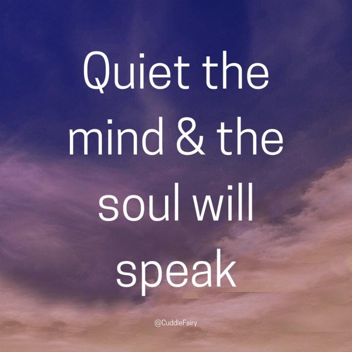 Quiet the mind & the soul will speak